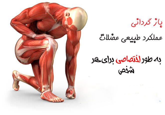 what-is-physiotherapy-1